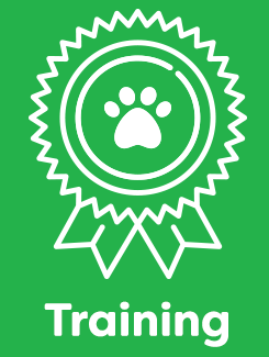 dog_training_service_2