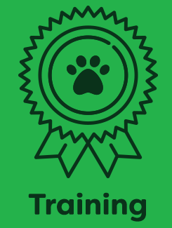 dog_training_service_2_hover