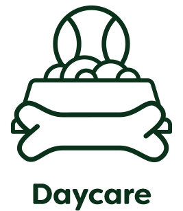 daycare-hover